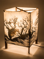 114: Table lamp of  photo silk  with NASA Worldview image of Greenland (September 4, 2018).
