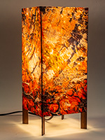 161: Table lamp with tall basic walnut base and photo silk shade with image of petrified wood in Arizona.