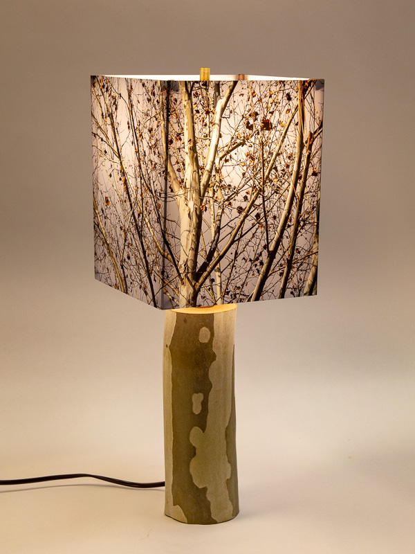 Table lamp with Indiana sycamore log base and photo silk shade with image of sycamore trees late fall.
