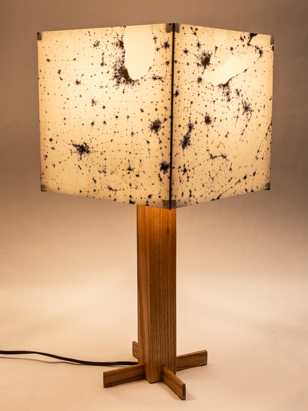 Table lamp with oak hardwood base and photo silk shade with NASA negative image of Eastern USA at night